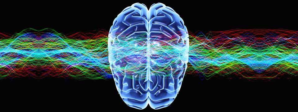 альфа тета волны мозга фотография
