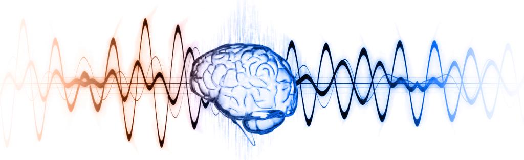 альфа тета волны мозга картинка 1