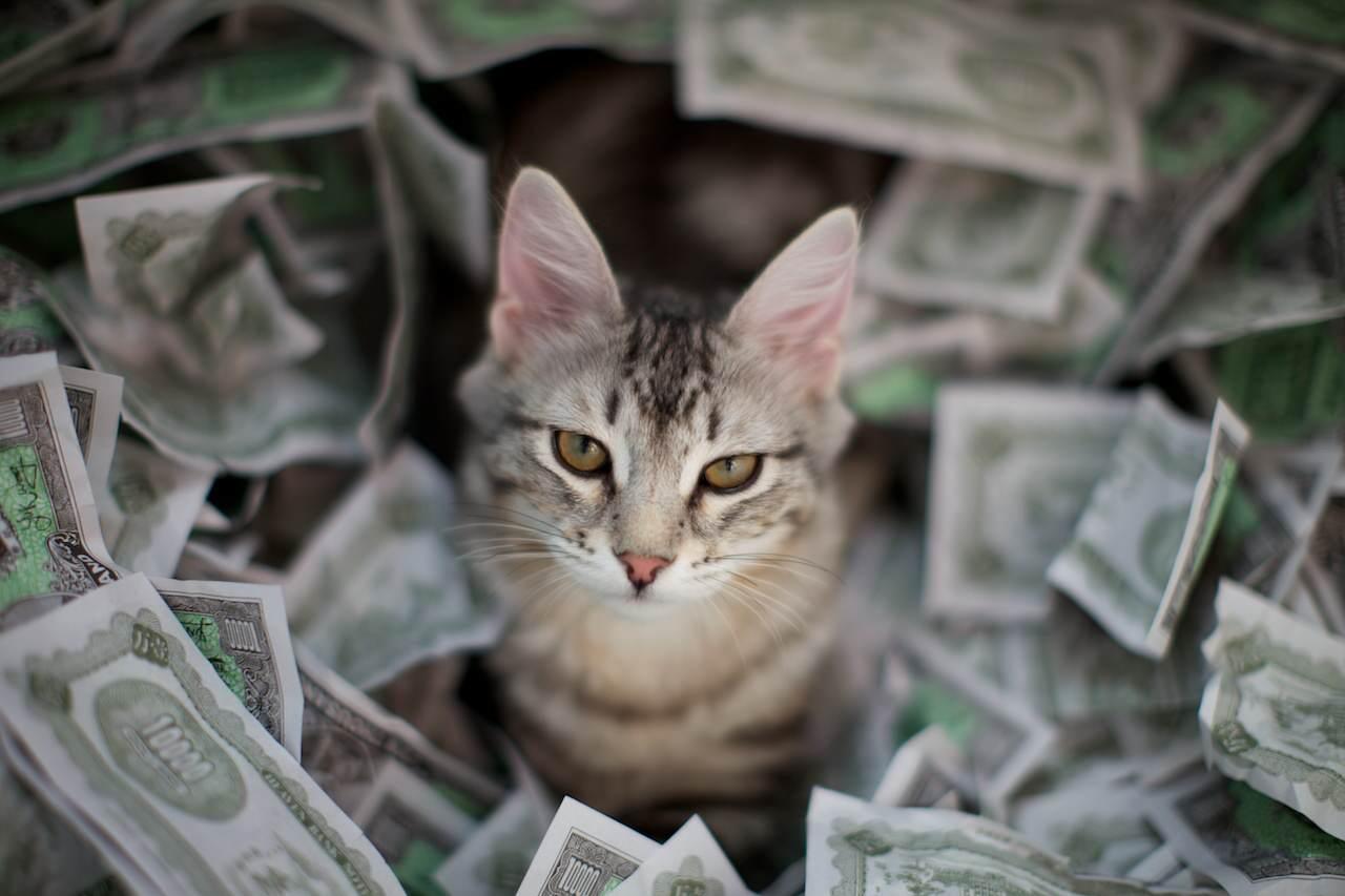 я богатая